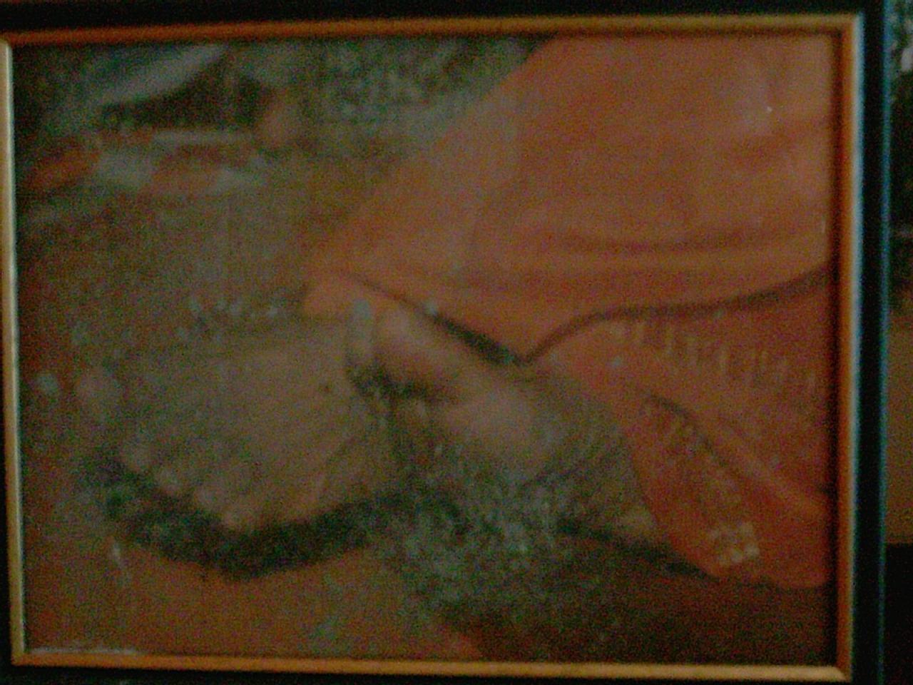 Vibbhutti sur pieds de Saï Baba