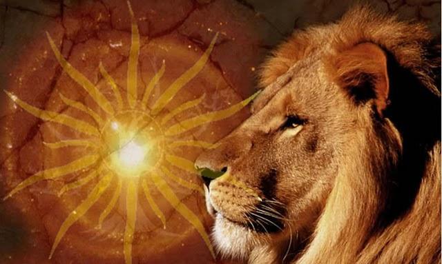 Lion et soleil